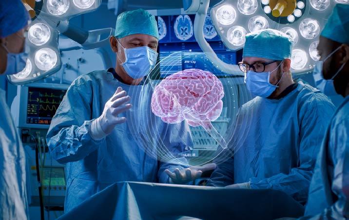 MSc. In Brain Sciences