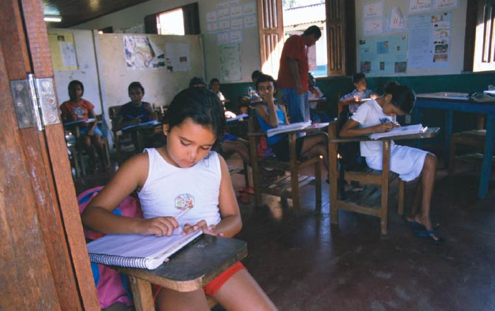 The Rollercoaster in Brazilian Education