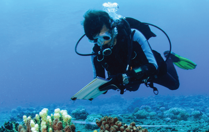 Marine Conservation Graduate Scholarship