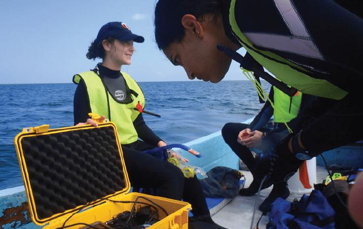 Undergraduate Marine Research Internship