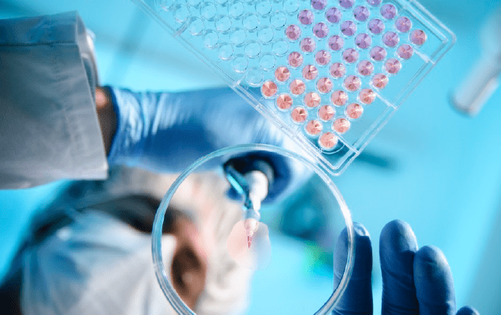 Jawaharlal Nehru University School of Life Sciences Research Associateship 2021