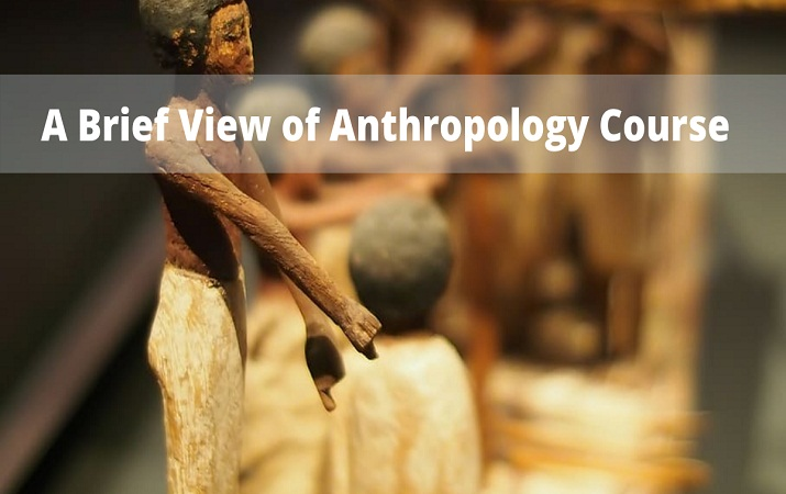 anthropology course
