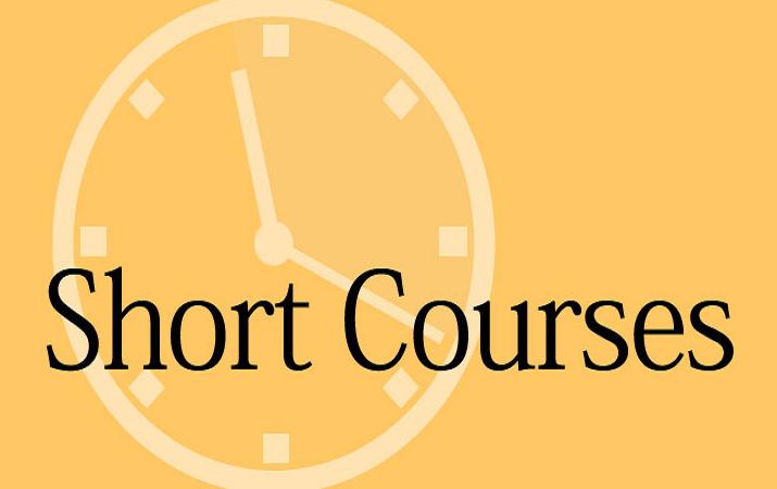 short online course